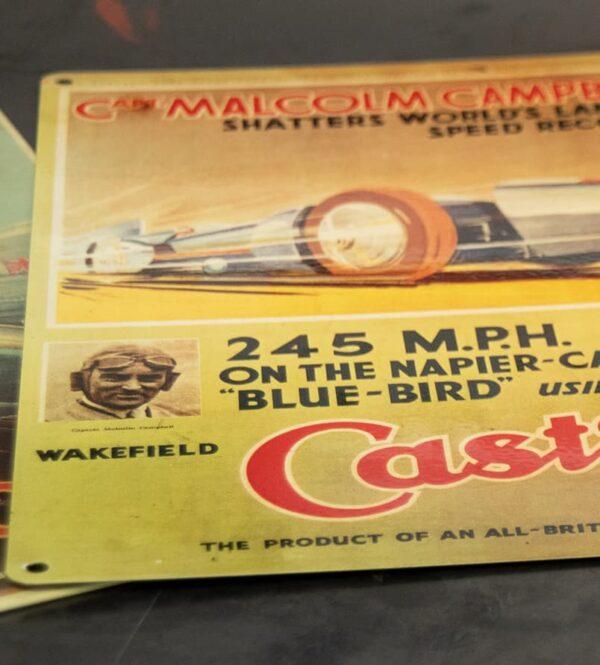 Heritage poster bluebird